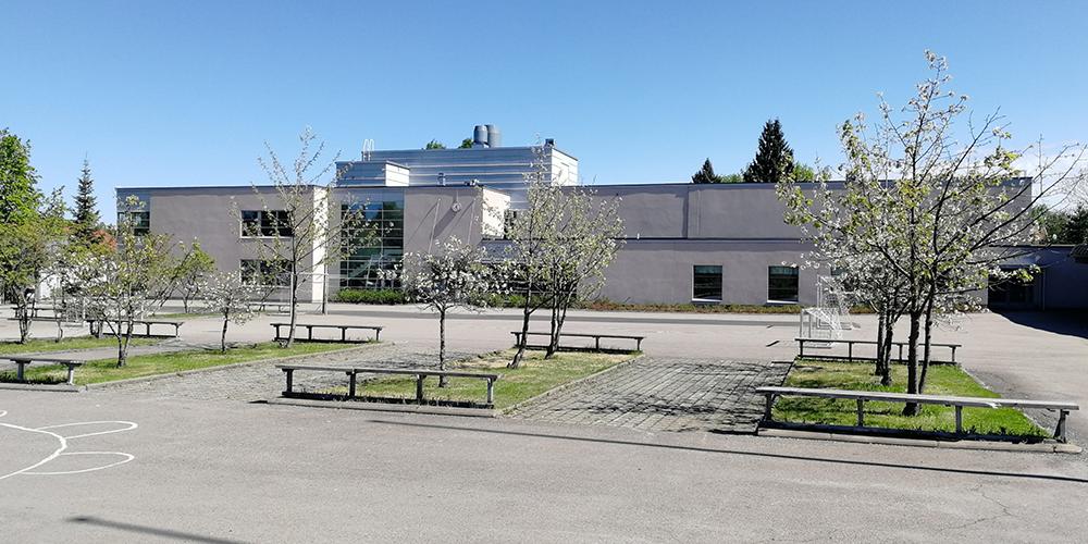 Keväinen kirkaan päivän kuva Norssin pihasta, jossa pensaiden takana näkyy vaalea kaksikerroksinen koulun H-siipi.