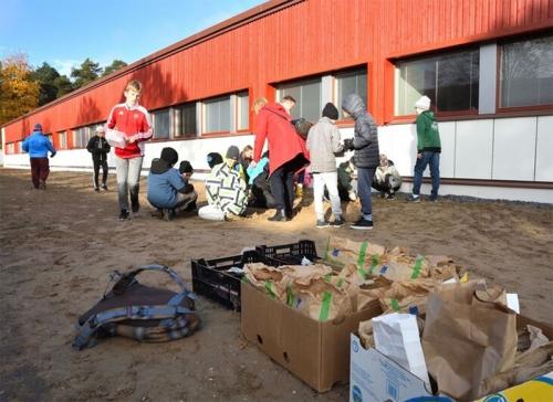 Kuvassa on Norssin 5A-luokan oppilaita istutustyössä villiniittyä perustamassa.