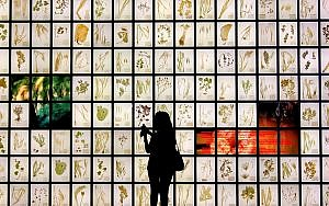 An obscured person standing in front of an illuminated wall depicting Tetris blocks.