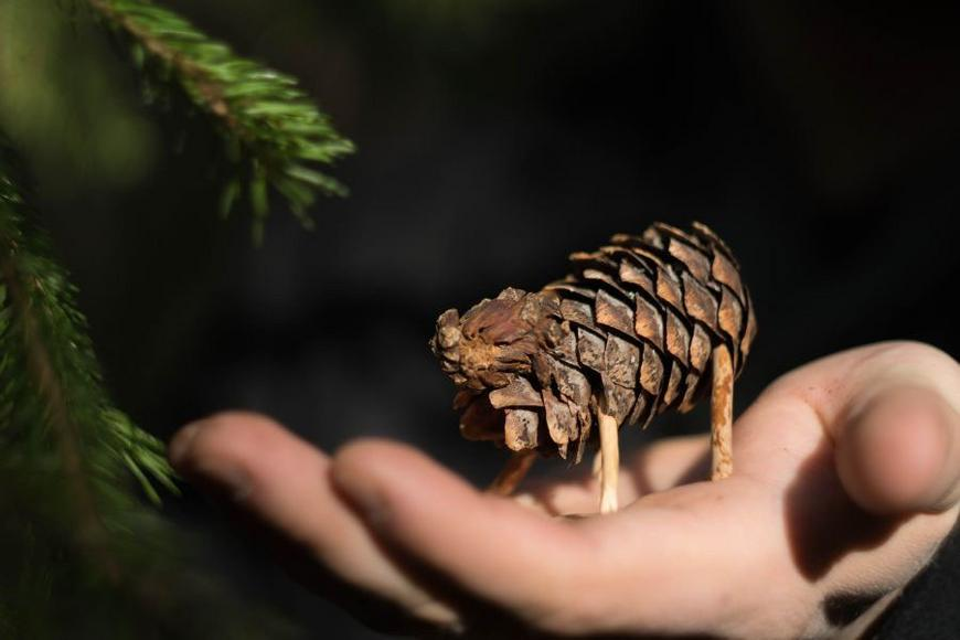 a toy cow made of a pine cone on the palm of a child