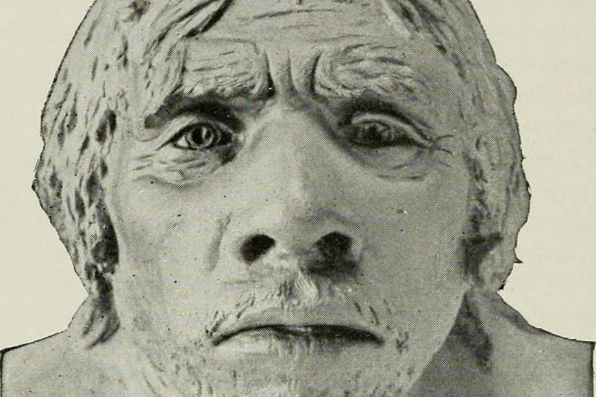 Model face of a Neanderthal. Photo: Internet Archive Book Images / Wikimedia Commons