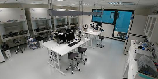 Laboratory services - Teaching lab Solina